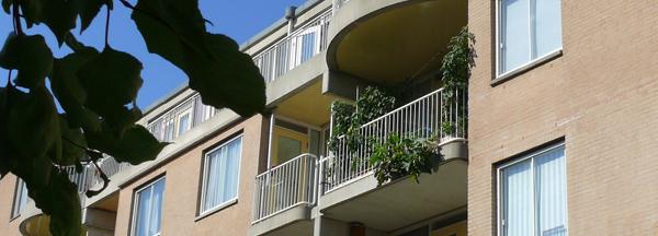 balkontuin600P1100179 copy