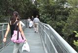 singapor