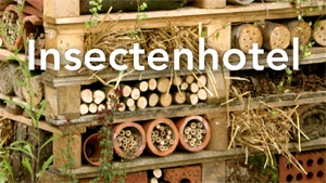 300insecthotel