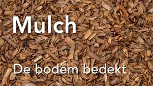 300mulch
